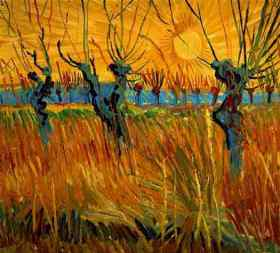 Willows_at_Sunset